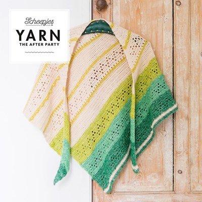 Scheepjes Yarn after party no. 23 forest valley shawl